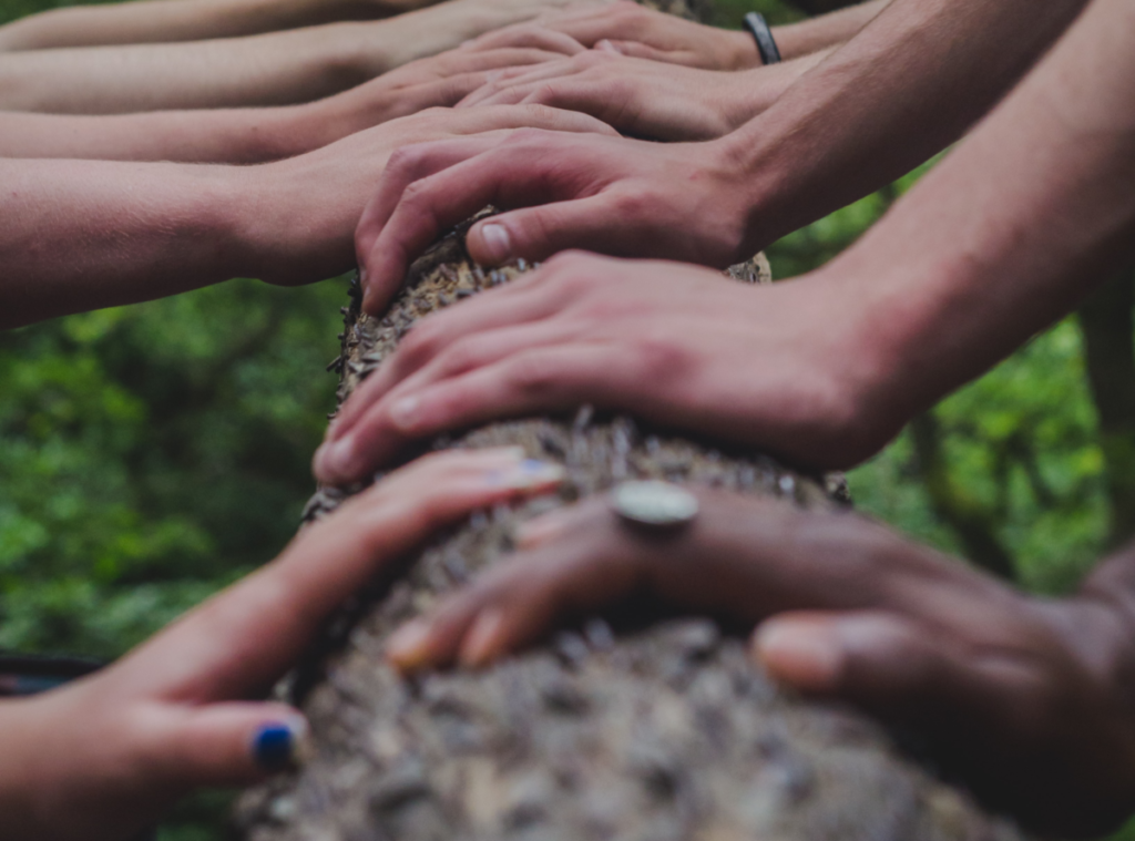 Hands coming from left and right sit palm down on a log. They are of various skin tones. One wears a large ring, another blue nail varnish and another a black bracelet.